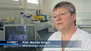 Prof. Monika Krüger