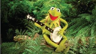 Star der Muppet Show: Kermit, der Frosch!