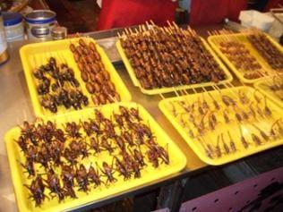 Insekten auf Spießen