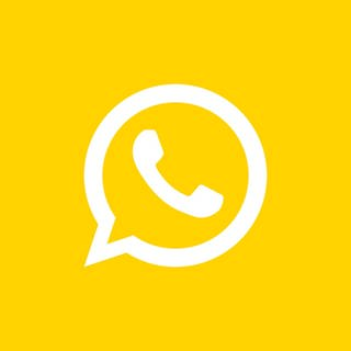 SWR1 Icon WhatsApp (Foto: SWR)