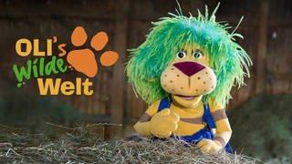 Logo OLI's Wilde Welt (Foto: SWR, SWR)