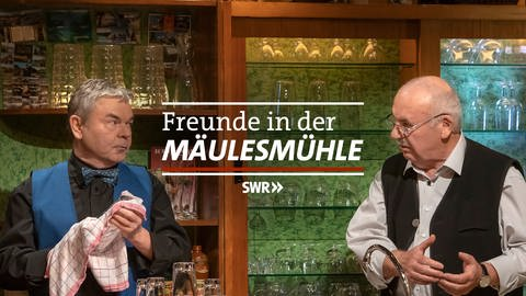 Logo Freunde in der Mäulesmühle  (Foto: SWR, SWR)