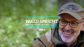 Logo Der mit dem Wald spricht (Foto: SWR)