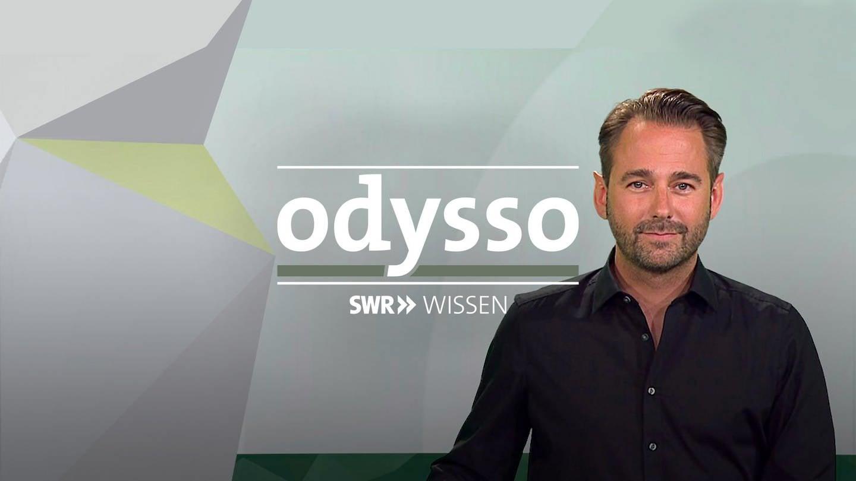 Logo odysso (Foto: SWR, SWR)
