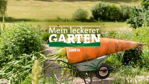 Logo Mein Leckerer Garten (Foto: SWR)