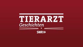 Logo Tierarzt Geschichten (Foto: SWR, SWR)