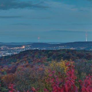 Landesschau Baden-Württemberg (Foto: SWR, SWR)