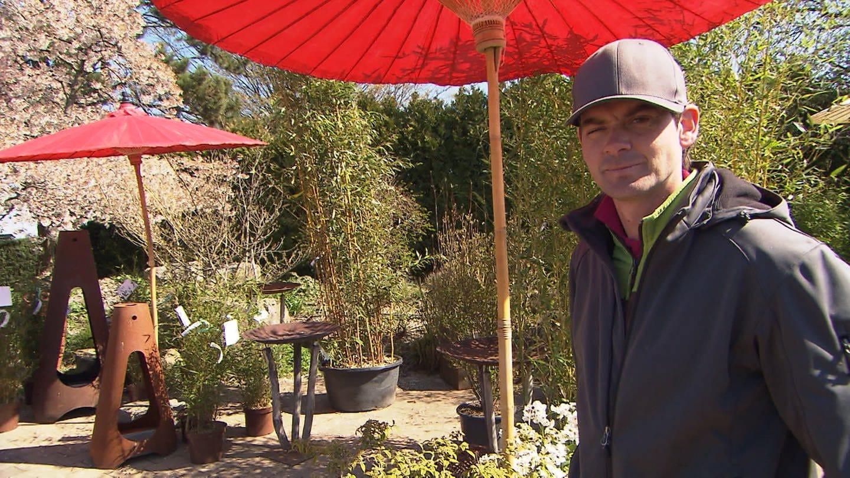 Gärtner Alex findet: Macht Corona-Urlaub im Garten