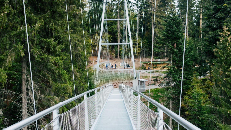Die Wildline Hängebrücke in Bad Wildbad (Foto: SWR)
