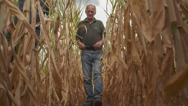 Landwirt Manfred Zelder aus Wittlich (Foto: SWR)
