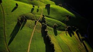 Die Heimat von oben – Timo macht Fotos mit der Flugdrohne  (Foto: SWR)
