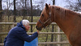 Pferdeflüsterin Krystyna (Foto: SWR, SWR)