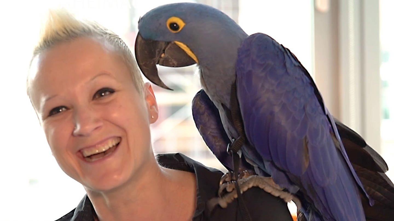 Frau mit Papagei auf der Schulter (Foto: SWR, SWR)