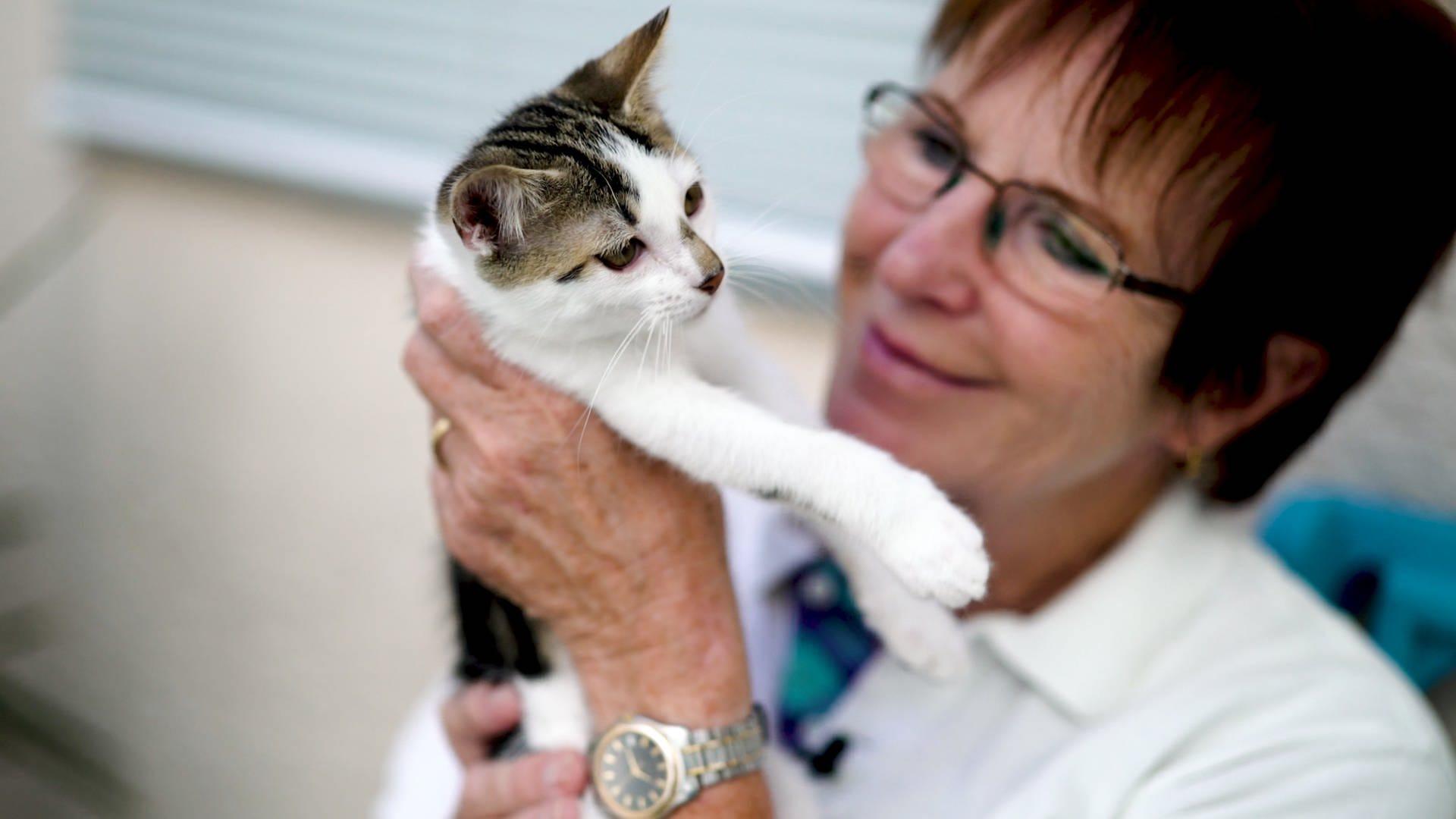 Wera von der Katzenhilfe hält eine kleine Katze in der Hand und lächelt sie an.