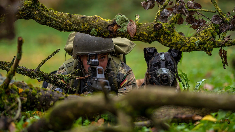Spürhund bei der Bundeswehr (Foto: SWR)