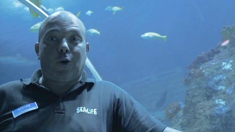 Sealife Speyer (Foto: SWR)