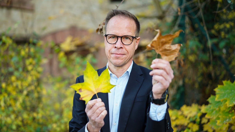 Mann im Anzug hält Herbstlaub in den Händen (Foto: SWR)