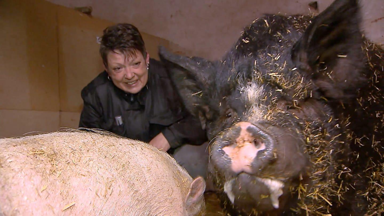 Silke Arnold rettet Schweine auf ihrem Hof in Imsweiler (Foto: SWR)
