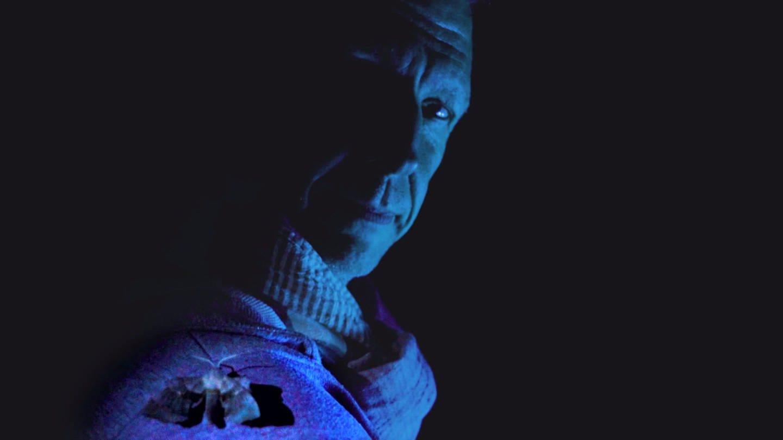 Insektenforscher Erik Opper mit einem Nachtfalter auf der Schulter (Foto: SWR)