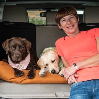 wei Hündinnen sitzen im Auto mit ihrem Frauchen (Foto: SWR)