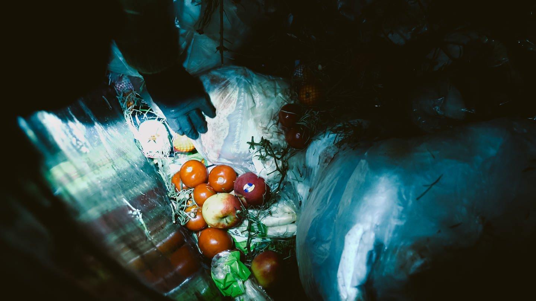 Blick in den Müllcontainer eines Supermarktes (Foto: SWR, SWR)