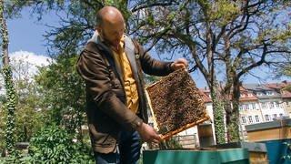 Berufsimker Tobias Miltenberger an einem seiner Bienenkästen in Stuttgart (Foto: SWR)
