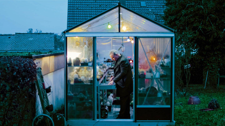 Detlef hat in seinem 20 Quadratmeter großen Gewächshaus rund 900 Kakteen (Foto: SWR)