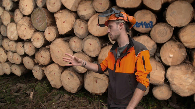 Förster Erik Speitling kämpft im Westerwald gegen das Waldsterben (Foto: SWR)