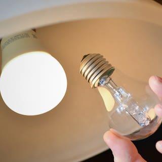 Eine Halogenlampe ist in einer Deckenleuchte gegen eine LED-Lampe ausgetauscht worden (Foto: dpa Bildfunk, Patrick Pleul)