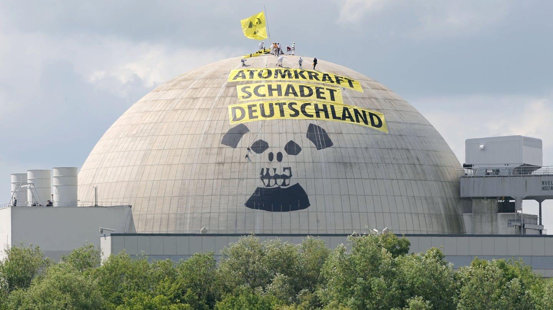 50 Jahre Greenpeace: Zwischen spektakulären Aktionen und dem Rande der Legalität