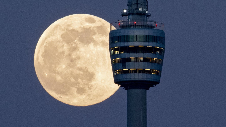 Mond über Stuttgart (Foto: picture-alliance / Reportdienste, Marijan Murat)