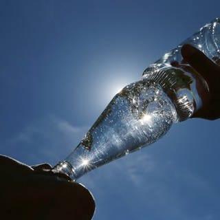 Mineralwasserflasche (Foto: picture-alliance / Reportdienste, SWR, Picture Alliance)