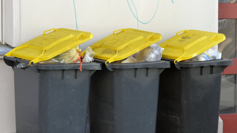 Gelbe Tonne statt Gelber Sack (Foto: dpa Bildfunk, Picture Alliance)