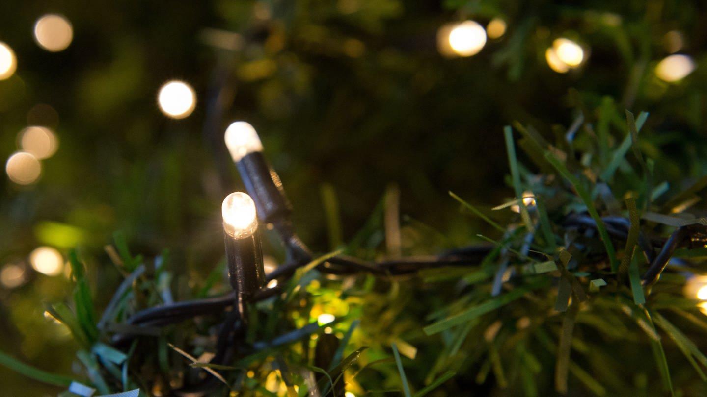 LED-Lichterkette (Foto: picture-alliance / Reportdienste, Andrea Warnecke)
