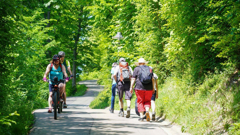 Radfahrer und Wanderer (Foto: picture-alliance / Reportdienste, Guenter Hofer/SchwabenPress)
