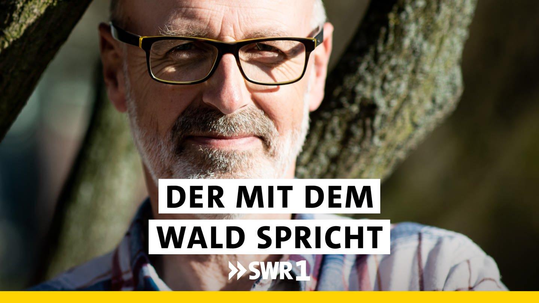 Peter Wohlleben - Der mit dem Wald spricht
