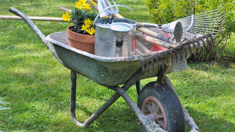 Blumentopf, Gießkanne und Gartenwerkzeuge in einer Schubkarre in einem Garten (Foto: Colourbox)