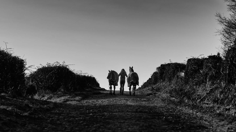 Eine Frau mit zwei Pferden auf einem Weg (Foto: Unsplash /Gary Ellis)