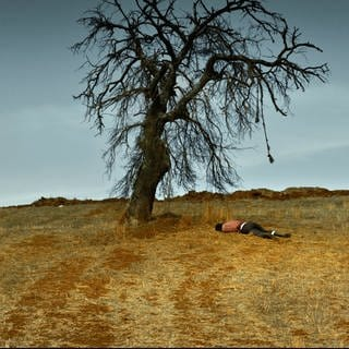 The Wild Pear Tree von Bilge Ceylan (Foto: Pressestelle, Morteza Atabaki)