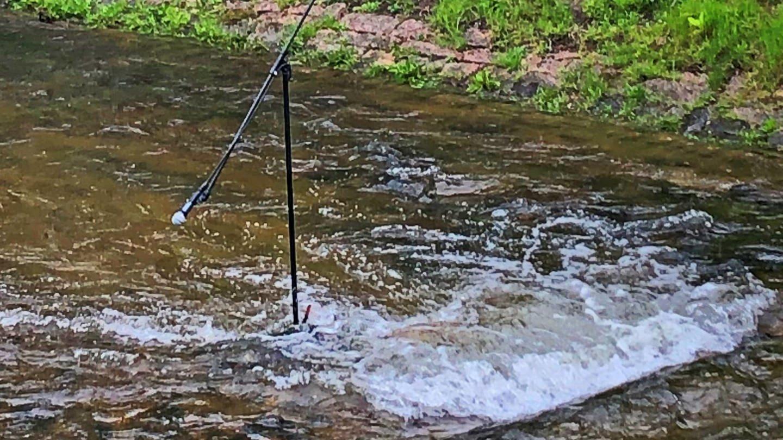 Encourage The Stream (Foto: SWR, Marie-Dominique Werner)