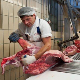 Ein Metzger zerlegt ein geschlachtetes Schwein in seine Einzelteile  (Foto: Imago, imago stock&people / Foto: Daniel Schvarcz)