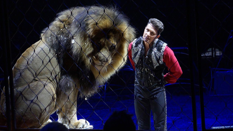 Alexander Lacey und einer seiner Löwen in der Manege (Foto: SWR, Rainer Schildberger)