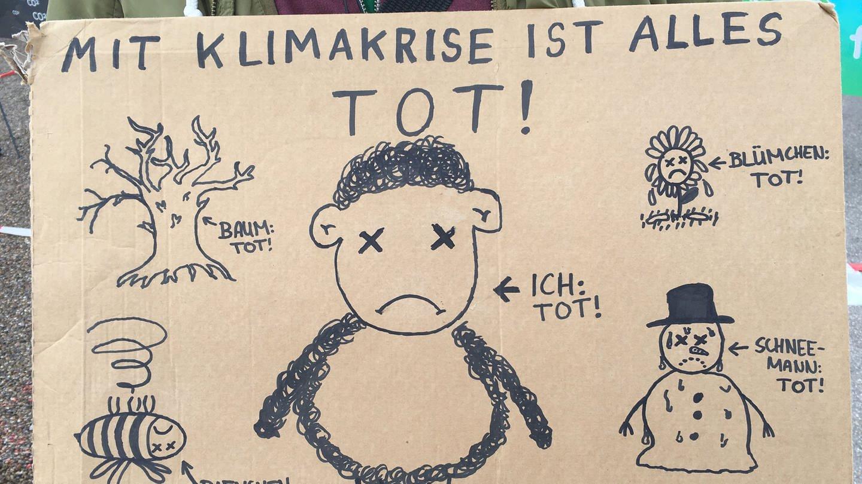 Plakat: Klimaangst, Klimadepression? Psychologist for Future unterstützen Klimaaktivisten.