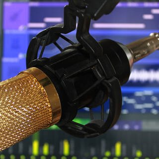 mictophone condenser sound recorder studio with software in computer screen behind background Symbolfoto (Foto: Imago, Agefotostock)