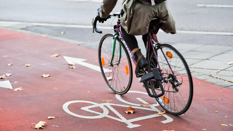 Ein Radfahrer fährt auf einem Radweg in Stuttgart (Foto: Imago,  imago images/Lichtgut)