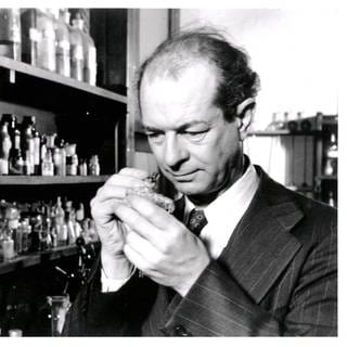 Linus Pauling (Foto: Imago, IMAGO / United Archives International / WHA UnitedArchivesWHA_060_0976)