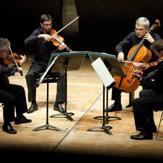 Arditti Quartett 2010 (Foto: picture-alliance / Reportdienste, ©Fred Toulet/Leemage)