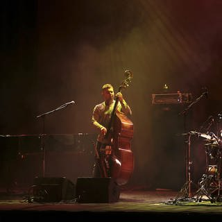 GoGo Penguin  (Foto: picture-alliance / Reportdienste, Picture Alliance)