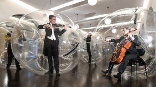"Musiker der Stuttgarter Philharmoniker spielen in Stuttgart während der Kunstaktion ""Social Distance Stacks"" des Künstlers Florian Mehnert in einem PVC Ball.  (Foto: picture-alliance / Reportdienste, Picture Alliance)"