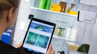 Frau schaut auf einem iPad das Bild einer im Kuehlschrank installierten Kamera an (Foto: SWR, picture alliance / dpa Themendie - Florian Schuh)
